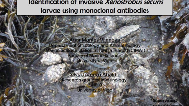 uso-inmunofluorescencia-para-la-deteccion-de-larvas-de-especies-invasoras-de-bivalvos